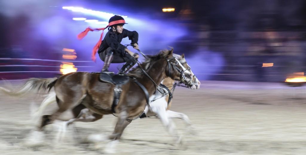 Cavalli di roma - Annarita Jenco