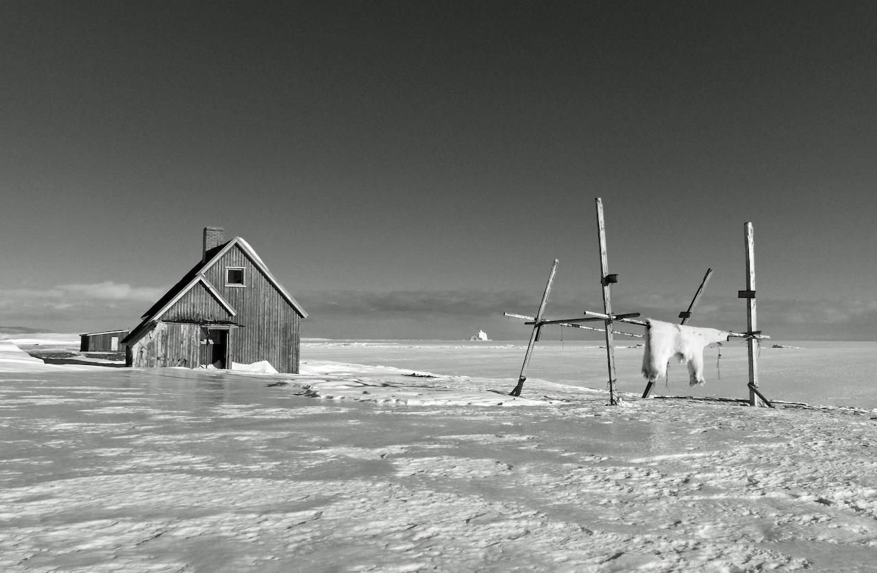 Paolo Solari Bozzi -Groenlandia